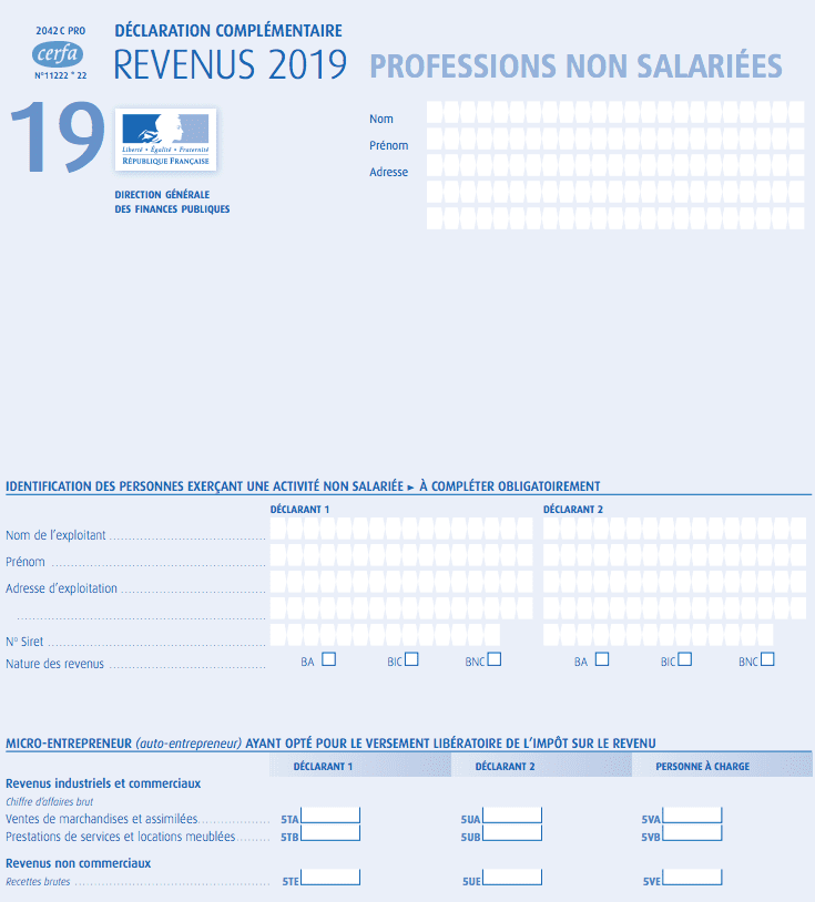 Micro Entrepreneur : How to complete your 2019 income tax form 2042 C Pro